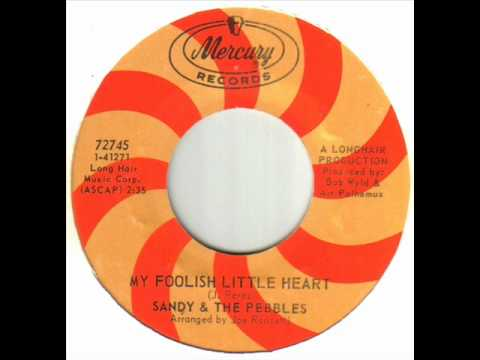 Sandy & The Pebbles - My Foolish Little Heart wmv