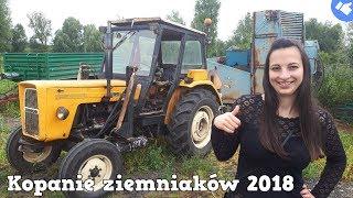 [Vlog #23] ☆ Kopanie Ziemniaków 2018 z Dziewczyną ☆ Polskie Wykopki