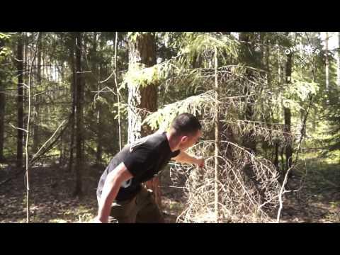 Как выжить в лесу  репортаж Onliner by