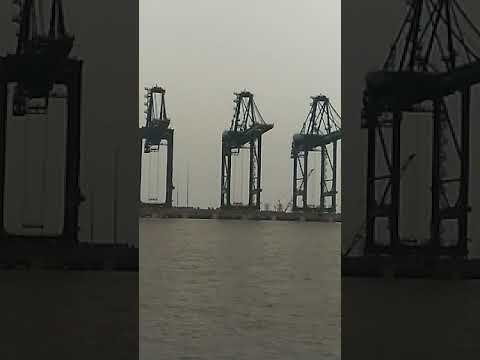 Jnpt port Mumbai | Container terminal | Beautiful sea life |