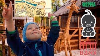 Смотреть видео КУДА СХОДИТЬ С РЕБЕНКОМ. КУДА СХОДИТЬ С РЕБЕНКОМ в Москве. Ферма на ВДНХ онлайн
