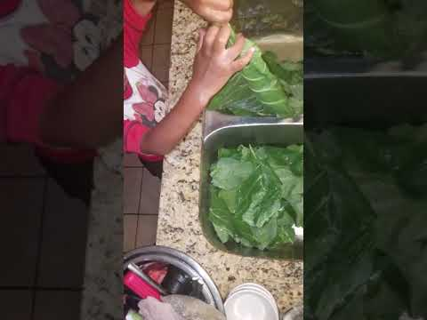 4 yrs old granddaughter cleaning collard greens