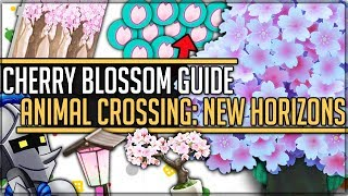 Cherry Blossom Event - All 14 Secret Items + How To Get Them - Animal Crossing: New Horizons! #acnh