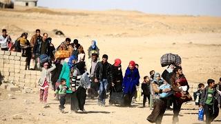 أخبار عربية - أكثر من 80 ألف نازح جراء معارك غربي الموصل