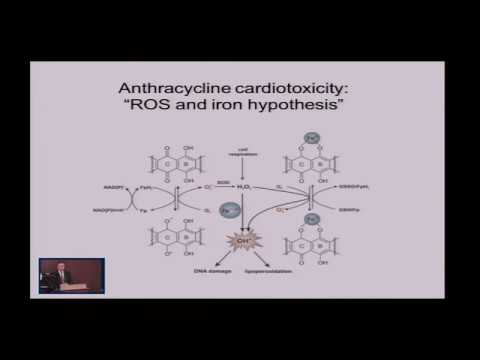 Anthracycline Cardiotoxicity: The Role of Cardio-Oncology in Management