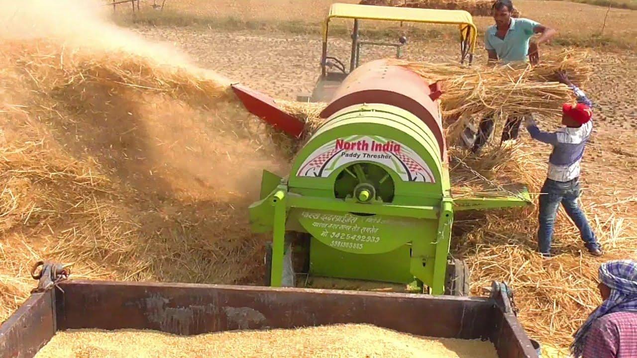 John Deere Tractor   Paddy Thresher in Rice farming   Swaraj 855 Fe    Swaraj 735 Fe - YouTube