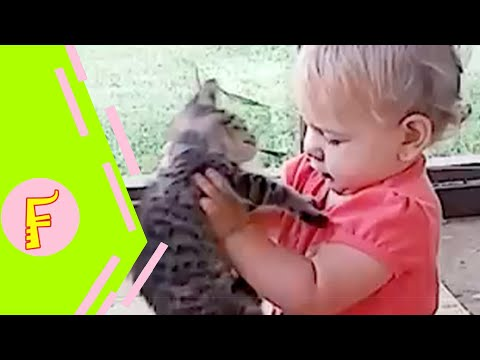 Baby and Cat Fun and Cute #8 - Funny Baby Video