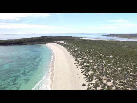 Enderby Island