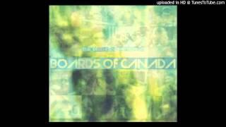 Boards of Canada & Ctrl All Del - 85' Pontiac Dream