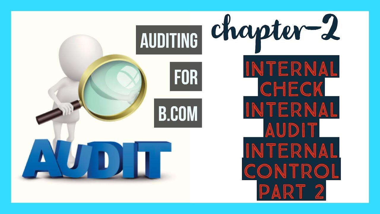 what is internal check in audit