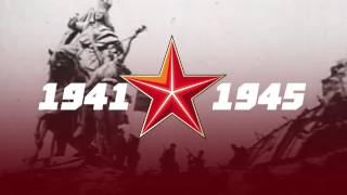 Памятник дружногорцам, погибшим в Великую Отечественную Войну (п. Дружная Горка)