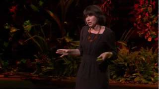 Alison Gopnik: What do babies think?