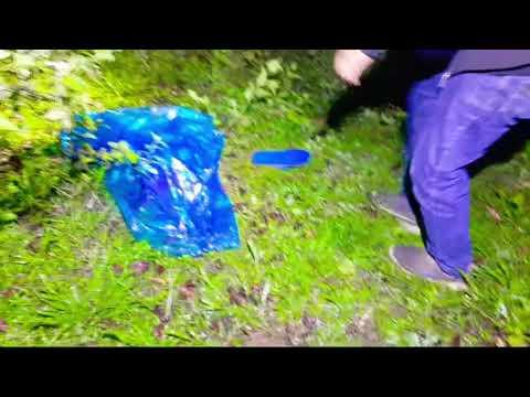 Download 2 remaja tel4njang lari berhamburan,en*od di bekas ladang tebu