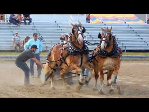 West Otter Tail Horse Pulls 2018-7-18