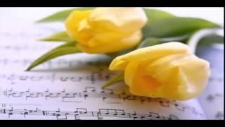 Video cancion  de aniversario.....vals...{olas del  danubio}  para quinceaños,,matrimonios........ download MP3, 3GP, MP4, WEBM, AVI, FLV Juni 2018