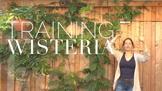 Vertical Gardening: Training Vines On How To Grow A Garden With Scarlett