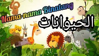 Lagu Kanak Kanak Terbaik.✅subsribed Cikgu Awan. Lagu nama-nama Binatang 🐱Bahasa arab -Bahasa Melayu