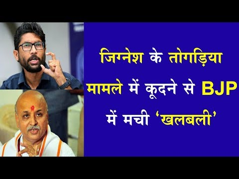 मुझे भी तोगड़िया की तरह डर लगता है, BJP-RSS मेरी हत्या करा सकते हैं !