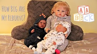 How Big Are The Babies? Reborn Babies & Toddler Size Comparison || FAQ ||