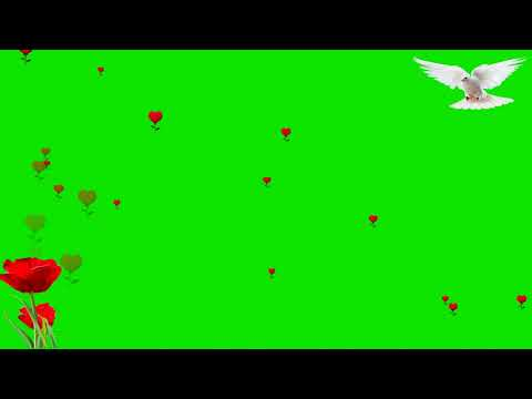 Green Screen Effects  Flowers Chroma Key Effects  Green thumbnail