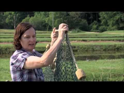 What Is A Seine Net And How Do You Use It.