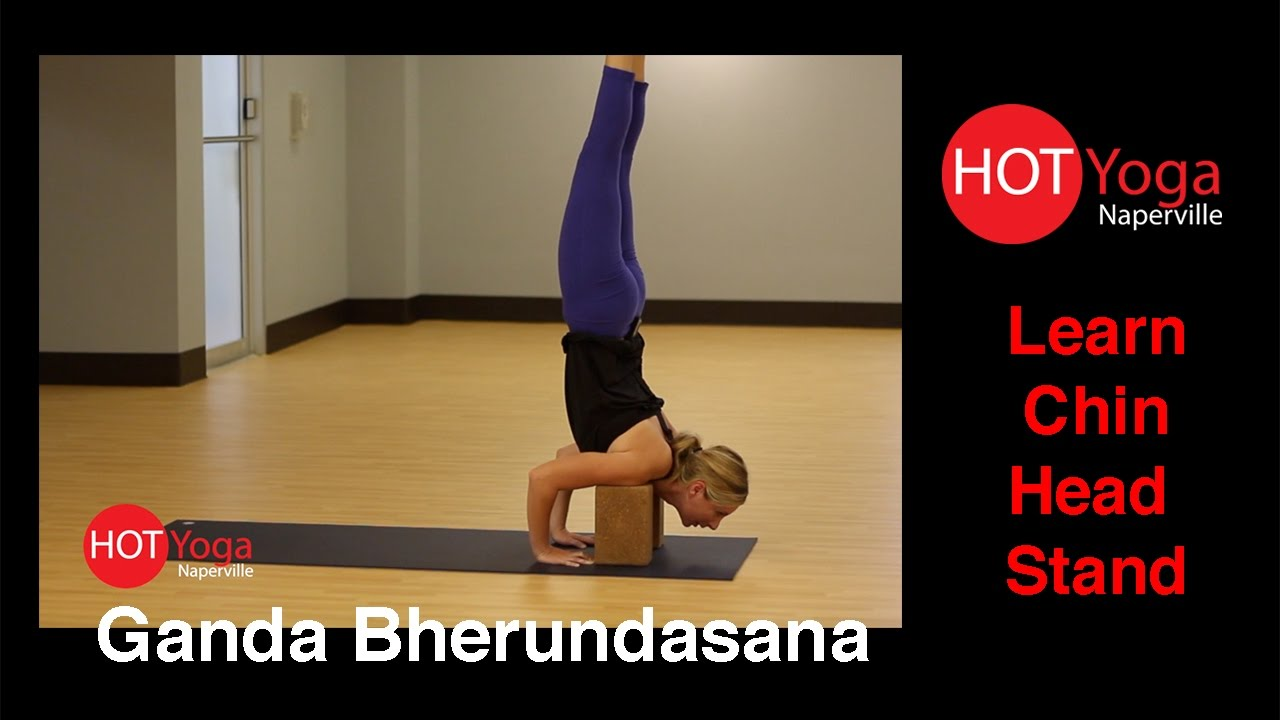 Chin Stand Flow Yoga (Ganda Bherundasana Vinyasa ...