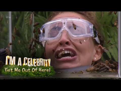 Ferne, Spencer and Vicky Face Terrifying Bushtucker Trial | I'm A Celebrity... Get Me Out Of Here!