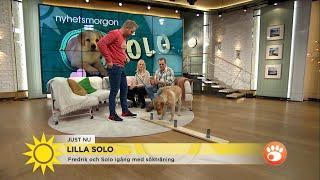 Fredrik och solo igång med sökträning: