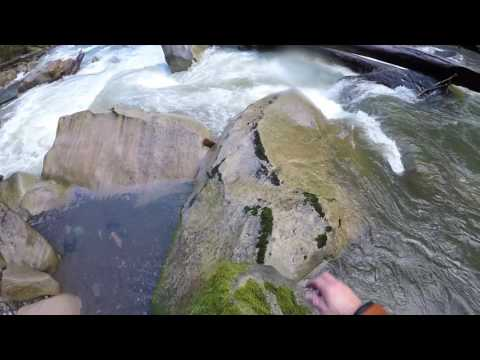The Carbon River