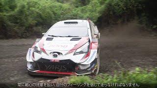 WRC 2019 Rd.6 チリ ハイライト動画 | TOYOTA GAZOO Racing