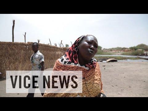 チャド共和国とボコ・ハラムの闘い