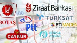 Varlık Fonu nedir? Dünyadaki uygulamaları nasıldır? Türkiye için ne anlama gelmektedir?