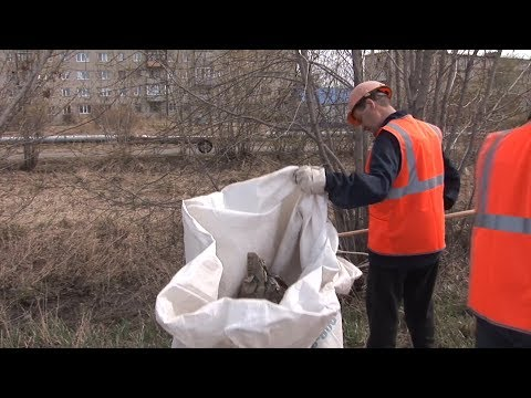 Сотрудники «Технокерамики» очистили от мусора улицу Автомобилистов