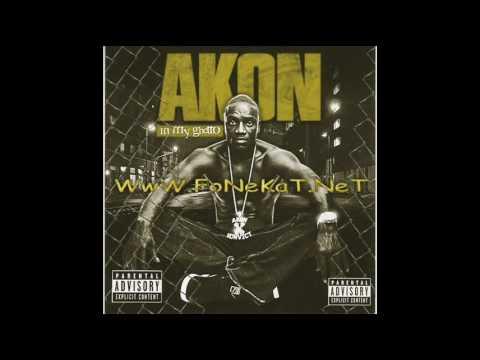Akon  - Never Took The Time