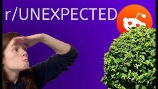 r/Unexpected   REDDIT ADVENTURES