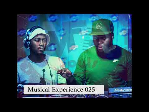 Musical Experience 025