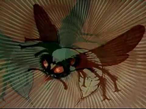 Download O Besouro Verde (seriado 1966) episódio 02 - Dublado