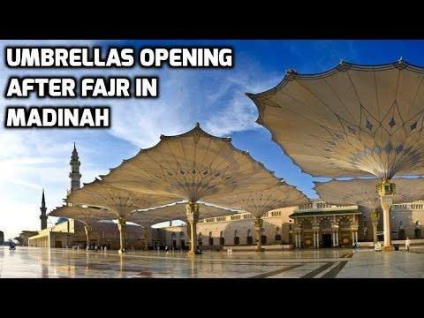 Hajj 2017 Amazing View Umbrellas opening after Fajr Masjid Nabawi Madinah Live