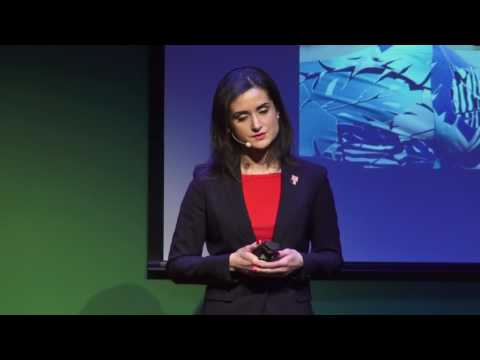 Telehealth expanding access to care | Irina Gelman | TEDxFMCC