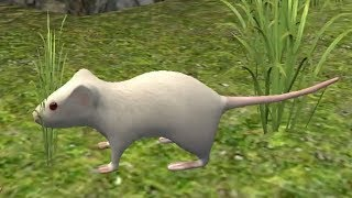 Mouse Simulator Android Gameplay