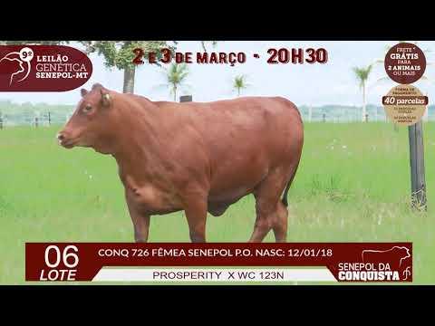 LOTE 06 CONQ 726