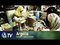Argélia   Economia & Comércio Exterior