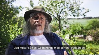Stefan Sundström fixar bihotell, DIY (Drill it Yourself)