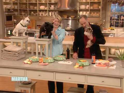 Healthy Pet Food ⎢Dr. Marty Goldstein ⎢Martha Stewart
