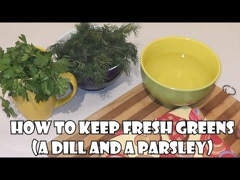 Life hacks ♡ How to keep fresh greens (a Dill and a parsley)