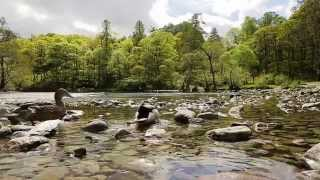 Wilderness Walks With Ray Mears 2014 Episode 5