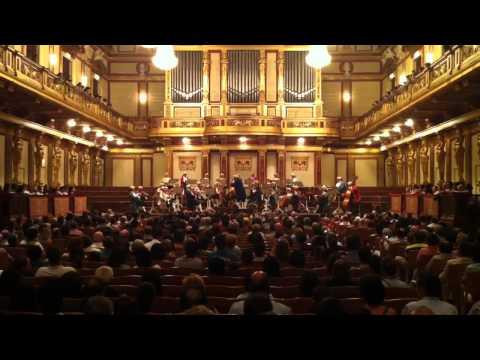 Mozart orchestra at Musikverein, Vienna