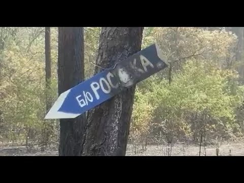 Печальная судьба Росинки. Как проворонили единственную муниципальную базу отдыха.