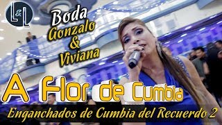 VIDEO: MIX CUMBIAS DEL RECUERDO (L&L) - A FLOR DE CUMBIA EN VIVO