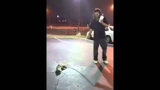 Crack head Puts Possum On A Leash(Wesley Chapel)